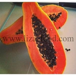 Red Papaya Pulp Manufacturer